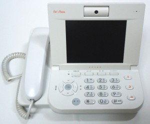 VP100 01 300x247 RTX1100にフレッツフォンを接続